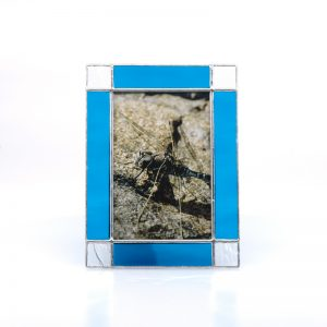 Bright Blue frame with square corners with picture of dragonfly