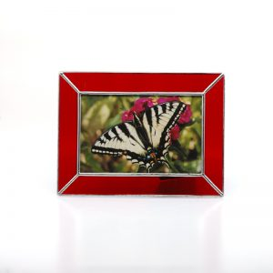 Red frame with picture of butterfly