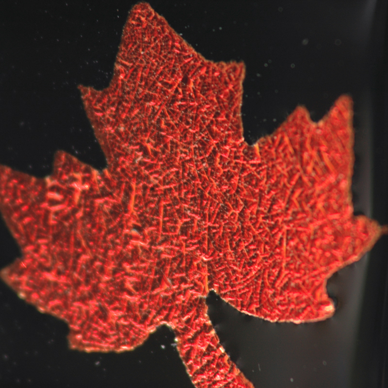 Closeup of red maple leaf on black pendant