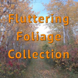 Fluttering Foliage Collection