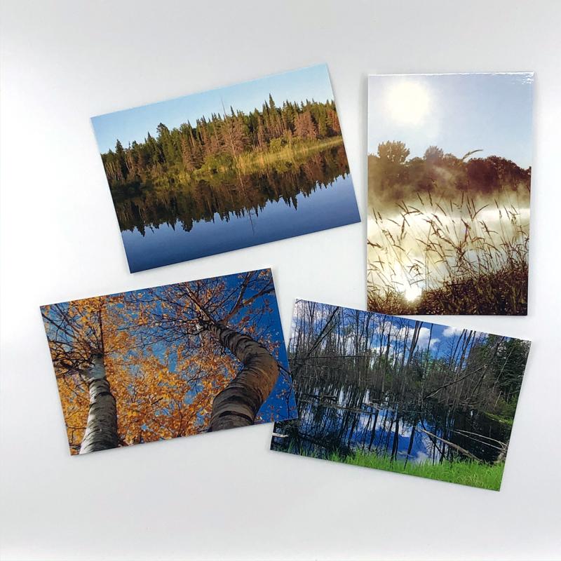 NaturePack-800×72