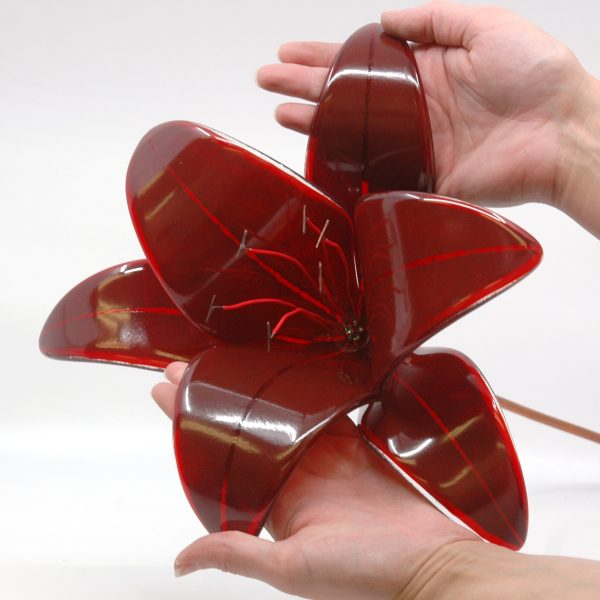 Dark Red Fused Glass Black Out Lily Size