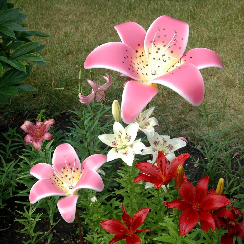 Pink Blush Fused Glass Trogon Lily Garden Art with Lilies in Garden